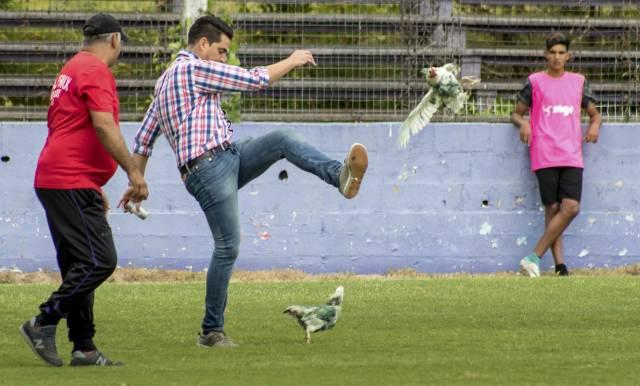 Uruguay: Dirigente patea gallina y su club es sancionado