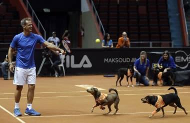 Chileno Jarry avanza a su primera final ATP en Sao Paulo